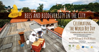 Webinar – Bees and Biodiverity in the city