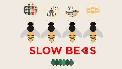 SLOW BEES: Plant a pollinator tree all over the world