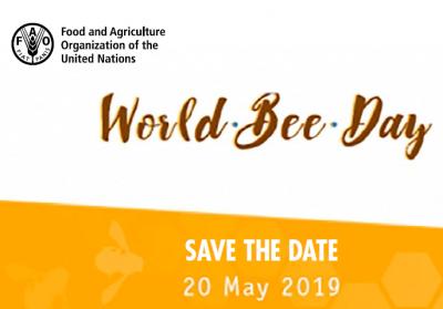 Okrogla miza: Krepitev ozaveščenosti o vlogi čebel in opraševalcev v kmetijstvu in proizvodnji hrane